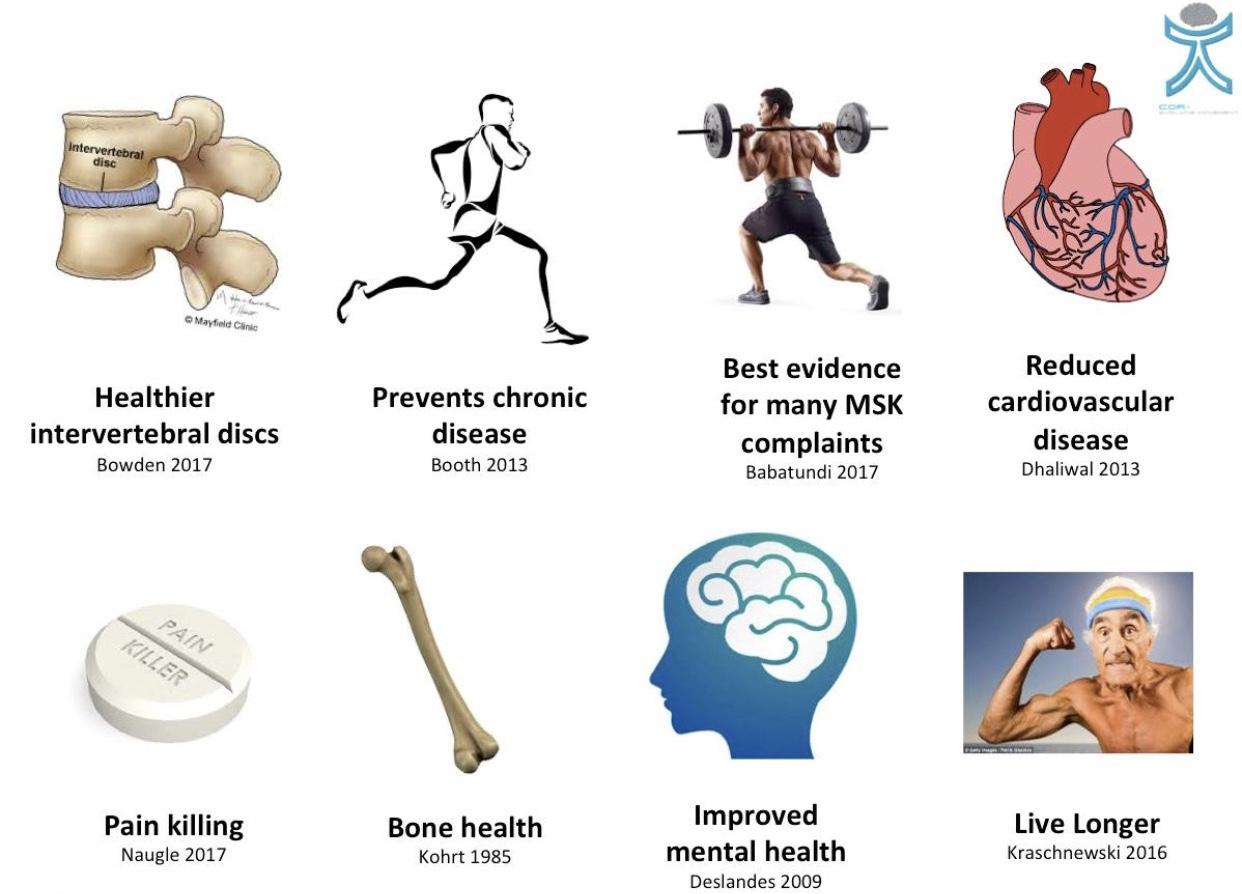 trenings effekter